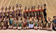 El Club Deportivo Ximnasia Rítmica Compostela ha participado este pasado fin de semana en el II Torneo Base Viravolta Santiago